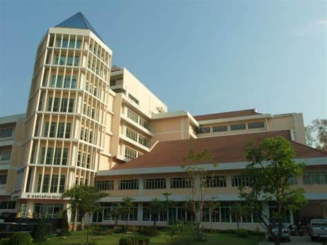 泰国国立庒棚皇家大学,泰国大学,海内外教育