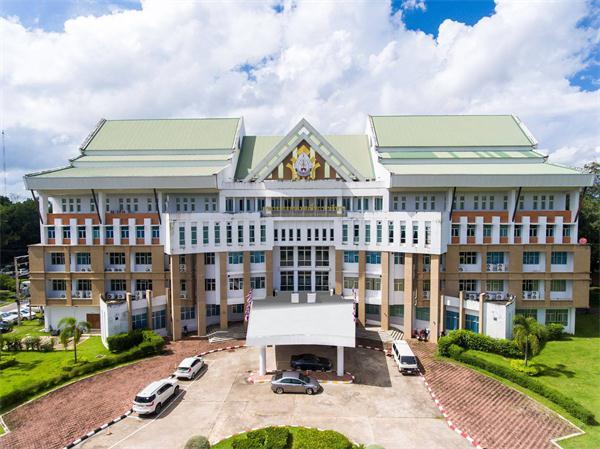 那空帕农大学,泰国大学,海内外教育
