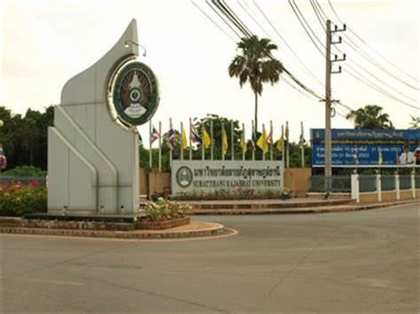 泰国素叻他尼皇家大学,泰国大学,海内外教育
