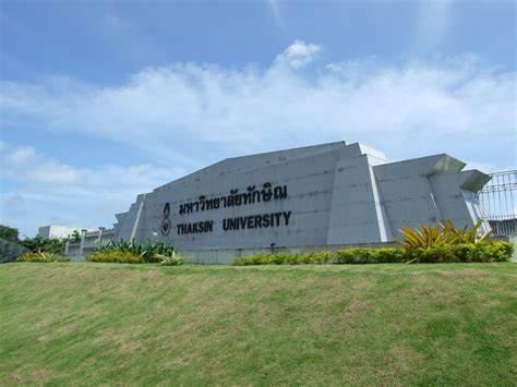 他信大学,泰国大学,海内外教育